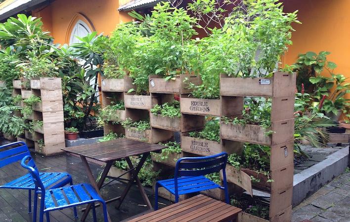 От градината до чинията – ресторанти със зеленчукова градина